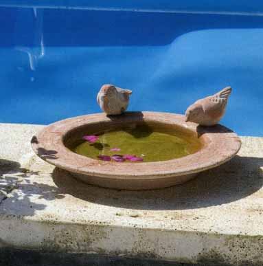 GIARDINO Varie Beverino 2 uccellini BM204