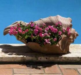 Terracotta GIARDINO Conchiglia BM201